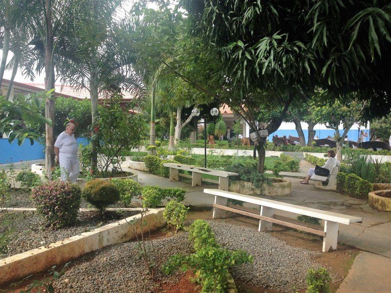 Ogród na terenie Casy
